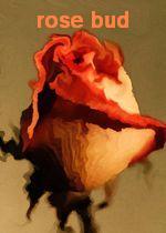 Pr�mio Rose Bud