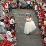 Este Casamento é um Mar de Rosas